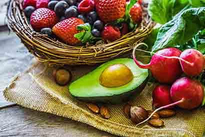 Plant Based Diet Wellness Origin