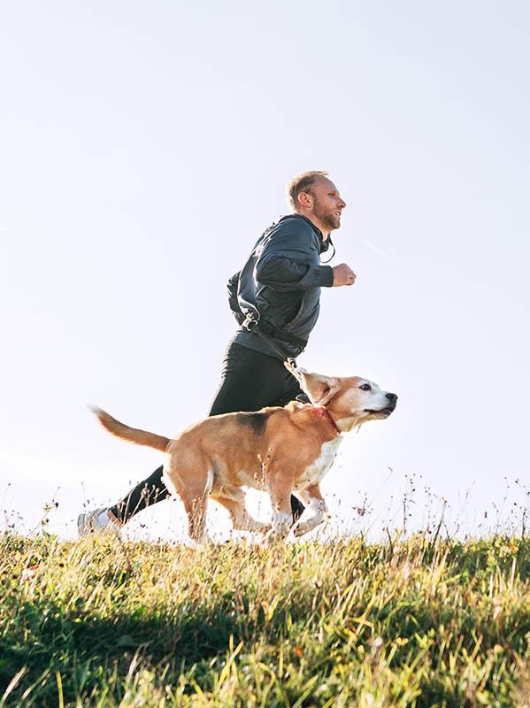 Man runs with his beagle dog