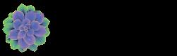 Wellness Origin Logo